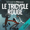 Vincent Hauuy - Le tricycle rouge: Noah Wallace 1 artwork