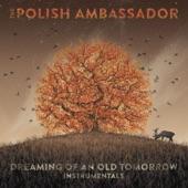 The Polish Ambassador - Camino Rojo (Instrumental)