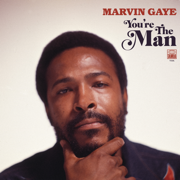 You're the Man - Marvin Gaye - Marvin Gaye