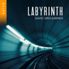 David Greilsammer - Labyrinth  artwork