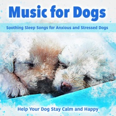 Music for Dogs: Soothing Sleep Songs for Anxious and Stressed Dogs - Help Your Dog Stay Calm and Happy