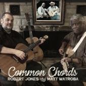 Robert Jones & Matt Watroba - Sowin' on the Mountain