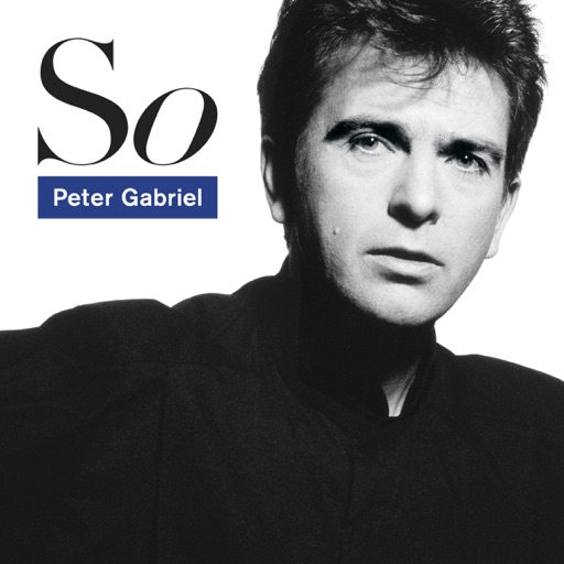 Art for Don't Give Up by Peter Gabriel