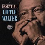 Little Walter - Dead Presidents