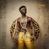 Son Of Africa - Kuami Eugene