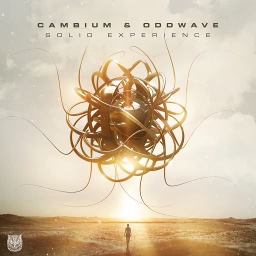 Solid Experience - Single by Cambium & Oddwave