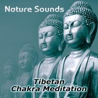 Chakra Healing Music Academy - Nature Sounds – Relaxation & Tibetan Chakra Meditation, Healing Massage and Spa, Yoga Music Sound Therapy for Chakra Balancing, Baby Deep Sleep, Studying Music