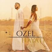 Hayati artwork