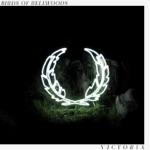 Birds of Bellwoods - Melatonin