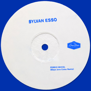 Sylvan Esso - Ferris Wheel (Maya Jane Coles Remix)
