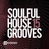 Soulful House Grooves, Vol. 15