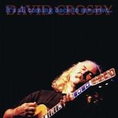 David Crosby - Déjà Vu