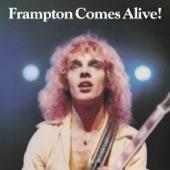 Peter Frampton - I Wanna Go To The Sun