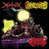 Xenophonic - Galactic Genocide