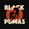 Black Pumas - Colors