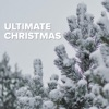 Christmas All Over Again by Tom Petty and the Heartbreakers iTunes Track 4