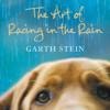 Garth Stein - The Art of Racing in the Rain artwork