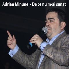 De Ce Nu M-Ai Sunat (feat. Mihăiță Piticu)