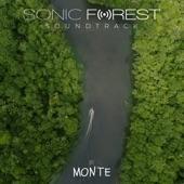 Monte/Bomba Estéreo/Nidia Gongora - Sonic Forest (Déjame Respirar)