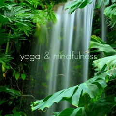 Yoga & Mindfulness - Music for Buddhist Meditation and Transcendental Meditation, Spa, Relaxation and Healing Music Therapy