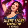 Sunny Leone Mashup - Single
