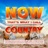 NOW That's What I Call Country - Various Artists