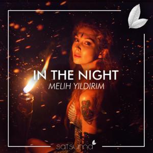 Melih Yıldırım - In The Night