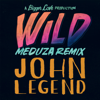 John Legend - Wild (MEDUZA Remix) artwork