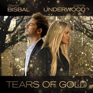 David Bisbal & Carrie Underwood - Tears Of Gold - Line Dance Music