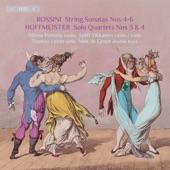 Minna Pensola - Double Bass Quartet No. 3 in D Major: I. Moderato