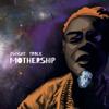 Dwight Trible - Mothership kunstwerk
