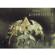 Queensrÿche - The Best of Queensrÿche (Remastered) [Deluxe Edition]