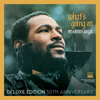 Marvin Gaye - What's Going On (Deluxe Edition 50th Anniversary)  artwork