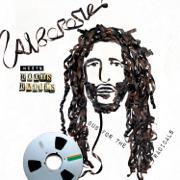 Alborosie Meets Roots Radics: Dub for the Radicals - Alborosie - Alborosie