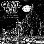 Carnal Ruin - Elder Spell
