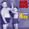 Mr. Big - To Be with You artwork