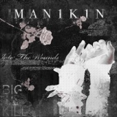MAN1K1N - Into the Void