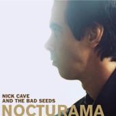 Nick Cave & The Bad Seeds - Wonderful Life