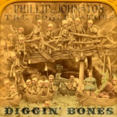 Phillip Johnston & the Coolerators - Temporary Blindness