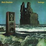 Black Mountain - Future Shade