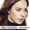 Ebru Gündeş - Araftayım artwork