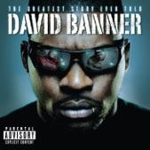 David Banner - Fly
