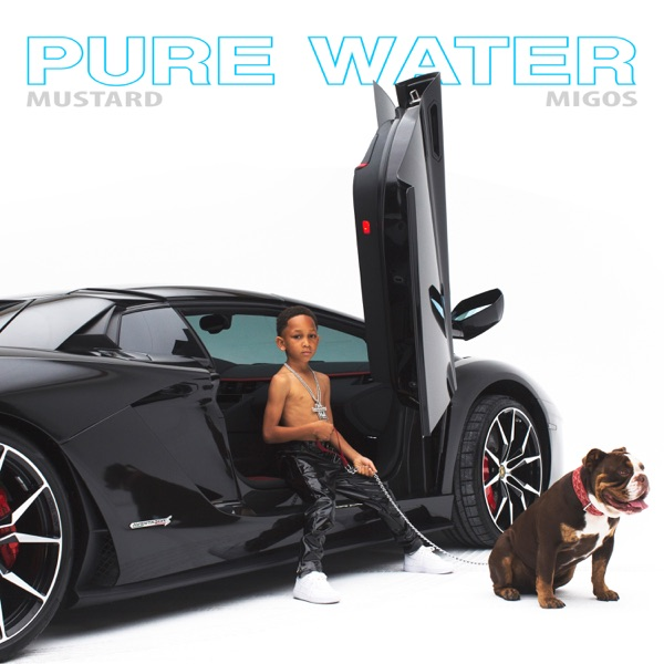 Pure Water - Single