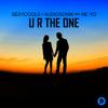 Sexycools & Audiosonik - U R the One (feat. NE-YO) artwork