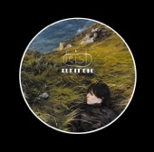 Feist - Lonely Lonely