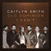 I Can't (feat. Old Dominion) - Single