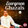 Evergreen Ghazals Vol 6