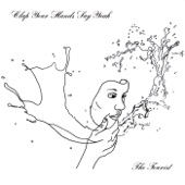 Clap Your Hands Say Yeah - Loose Ends