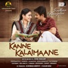 Endhan Kangalai From Kanne Kalaimaane Single