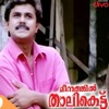 Meenathil Thalikettu Original Motion Picture Soundtrack